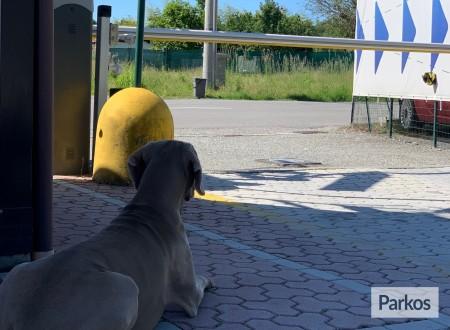 Central Parking Malpensa (Paga online) foto 7