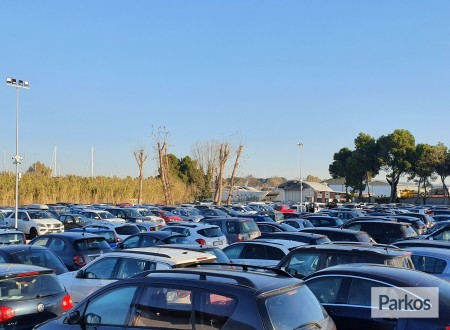 King Parking Smart (Paga in parcheggio) foto 5