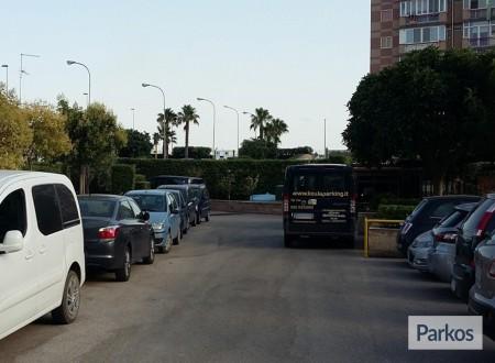 Koala Parking (Paga in parcheggio) foto 1