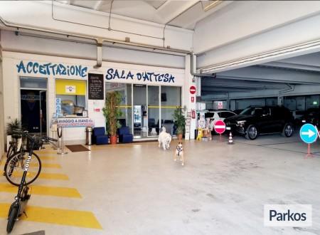 Low-Cost New Parking (Paga online o Paga in parcheggio) foto 4