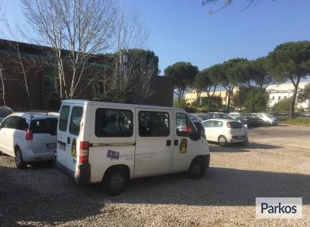 Parcheggio Aeroporto Firenze foto 6