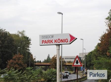 Parkkönig foto 2