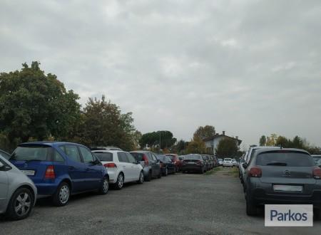 Well Parking (Paga in parcheggio) photo 6