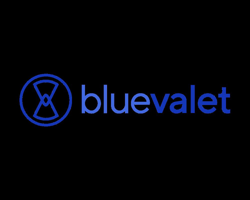 Blue Valet Sevilla (Paga online)